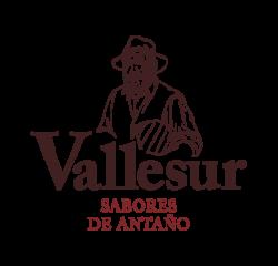 vallesur-logo